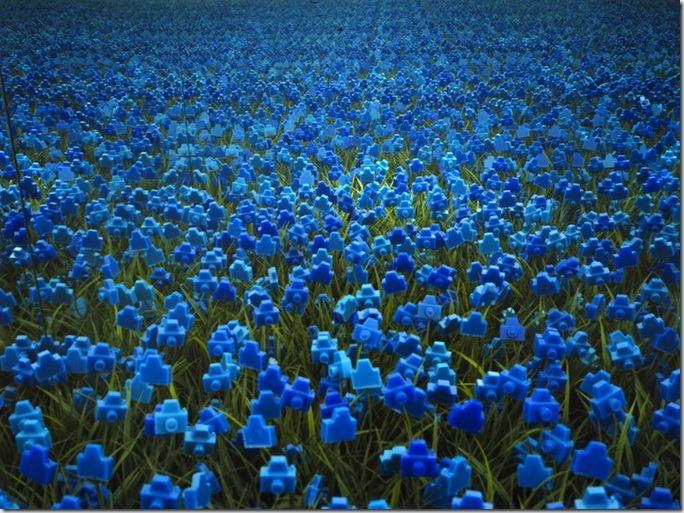 Florile-aparate foto de la André Feliciano