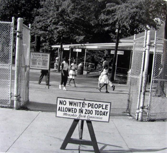 "1959. ""Zi neagra"" - ziua in care in gradina zoologica din Memphis merg doar negrii."