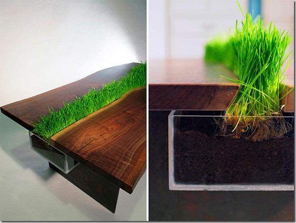 Masa verde neobisnuita, din care creste iarba